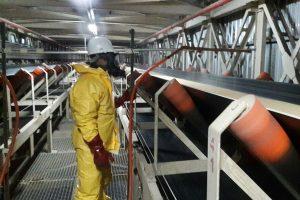 aplicacion-de-salmonellicida-y-fungicida01